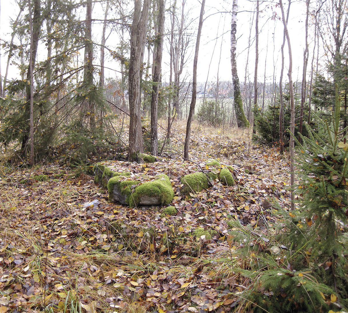 Sentida bebebyggelse i Skogsborg