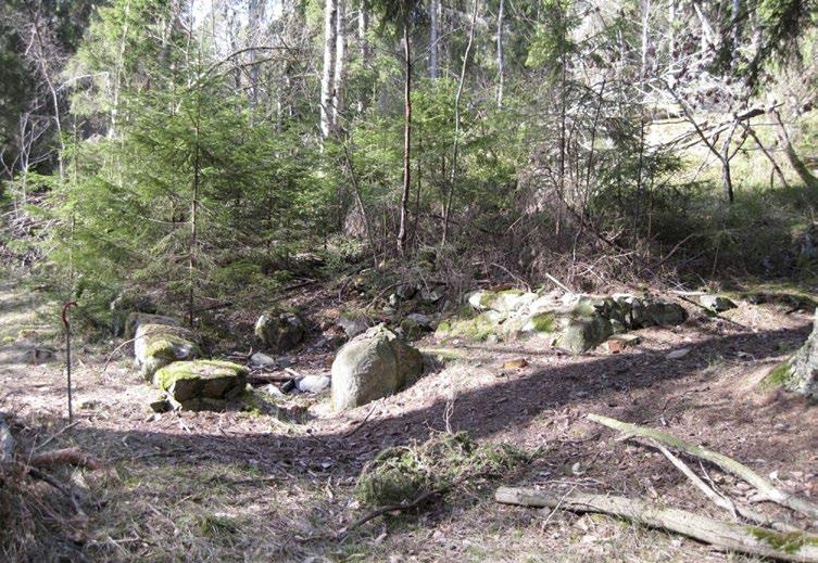 Vista skogshöjd