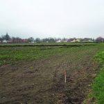 Förhistoriska boplatser och en sentida gårdslämning