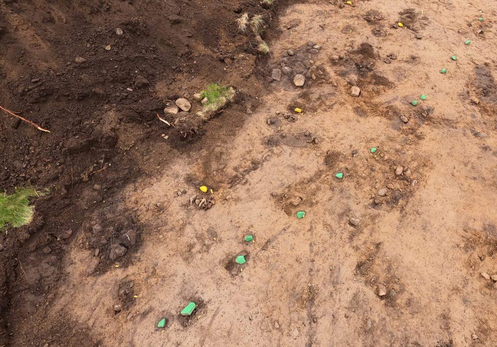 Det norra långhuset. Gula stenar markerar lägen för stolphål som ingår i den inre takbärande konstruktionen medan de gröna stenarna markerar stolpar i ytterväggarna. Lägg märke till de dubblerade gröna stenarna som markerar läget för ingången. Foto: Krister Kám Tayanin, Arkeologerna CC-BY
